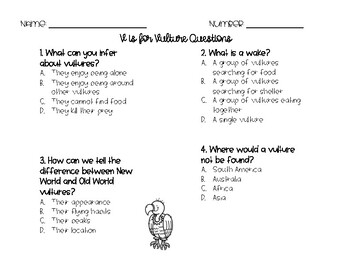 RACE Constructed Response Writing Practice Vultures