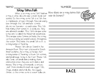 RACE Constructed Response Writing Practice X-Ray Tetra Fish
