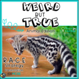 RACE Strategy (Constructed Response) Weird but True Presen