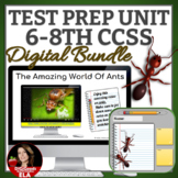 TEST PREP | RACE Strategy and Writing Prompts Google Classroom
