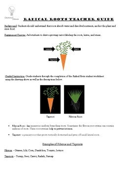 RADICAL ROOTS LESSON AND ACTIVITY