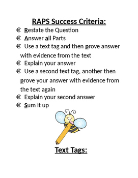 RAPS strategy and success criteria