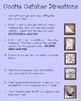 READING COMPREHENSION COOTIE CATCHER  BUNDLE FOR GRADES 4-8!