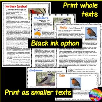 READING COMPREHENSION Non-Fiction BIRD SUPER-BUNDLE Passages Task Cards