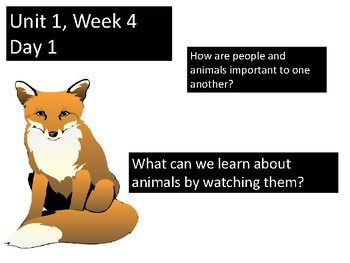 READING STREET PowerPoint A Fox and a Kit Unit 1.4