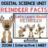 REINDEER FACTS| Digital Kindergarten Science Comprehension | Digital + Printable
