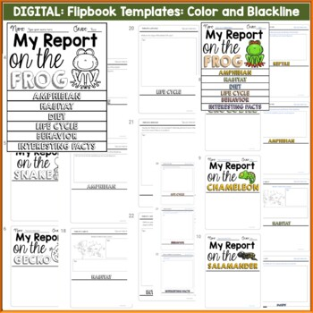 ANIMAL REPORT: REPTILES AND AMPHIBIANS: INFORMATIVE WRITING: RESEARCH TEMPLATES