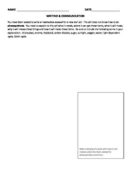 RESPIRATION, PHOTOSYNTHESIS worksheet/activity, STEM and NGSS