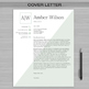 RESUME TEACHER Template For MS Word | + Educator Resume Writing Guide  | Amber