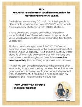 RF.1.3c  final-e & common vowel team conventions ELL/ESL Building Vocabulary