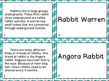 RI K.2 & RI1.2 & RI 2.2 Topics Matching Cards - Leveled for Small Groups