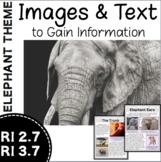 RI 2.7 & RI 3.7 Elephant Theme Informational Text - Readin