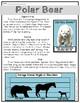RI 2.7 & RI 3.7 Polar Bear FREEBIE
