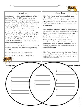 RI 2.9 Compare and Contrast Bees and Wasps