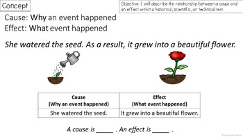 RI 3.3 PowerPoint: Cause and Effect