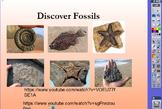 RIGOR Reading Invervention Level 1-Unit 3- Fossils flip chart