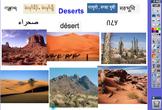 RIGOR Reading Invervention Level 1-Unit 6- Deserts flip chart