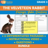 Answering Questions - Third Grade Constructed Response with The Velveteen Rabbit