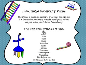 RNA Protein Synthesis Vocabulary Puzzle Activity for Small