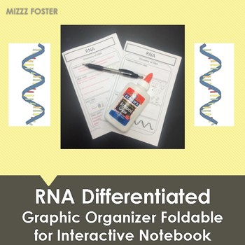 RNA Graphic Organizer Foldable for Interactive Notebook