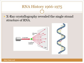 RNA Power Point