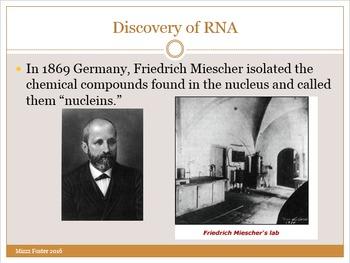 RNA Power Point