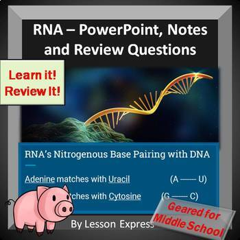 RNA PowerPoint, Notes, Review Questions