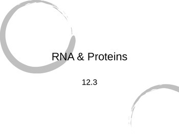 RNA, Proteins, Transcription, & Translation PowerPoint