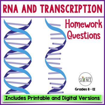 RNA (Ribonucleic Acid) Transcription Homework Assignment / Study Guide