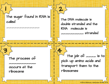 RNA Task Cards