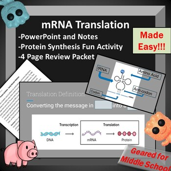 RNA Translation + Protein Synthesis -- PowerPoint, Review Packet, Alien Activity