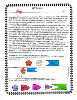 RNA Worksheet