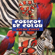 Codigos de color (Color Codes)