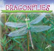 Dragonflies [Interactive eBook]