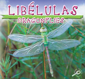 Dragonflies (Spanish Version) [Interactive eBook]
