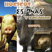 Hocicos, espinas y escamas (Snouts, Spines, and Scutes)
