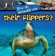 How Animals Use...Their Flippers [Interactive eBook]