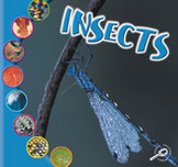Insects [Interactive eBook]