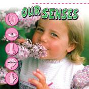 Our Senses [Interactive eBook]