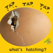 Tap, Tap, Tap... What's Hatching?