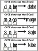 RTI CVCE Nonsense Word Elkonin Box Cards