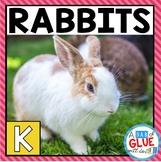 Rabbits: An Animal Study