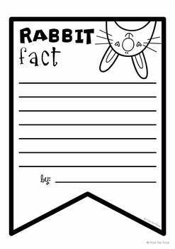 Rabbit Facts Banner {Bunting, Garland, Pennant Display}
