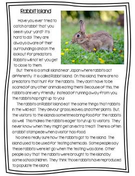 Rabbit Island Close Reading Packet