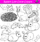 Rabbit Life Cycle Clipart