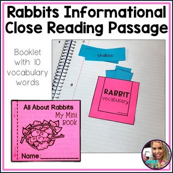 Rabbit Life Cycle Interactive Reading Passage and Comprehension Worksheet