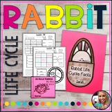 Rabbit Life Cycle Close Reading and Comprehension Worksheet
