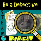 Rabbit Life Cycle | Project Based Learning Biomimicry Digi