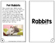Rabbit Reader