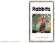 Rabbit Reader